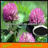 100%Natural plant red clover /trifolium pratense extract powder/trifolium pretense extract