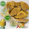 Naturale 95% curcuma curcumina estratto