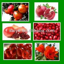 hot sale stainless steel pomegranate peeling/peeler machine 0086-18638277628