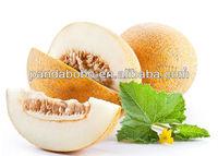 Supply Chinese sweet Hami Melon