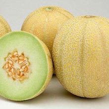 Fresh Sweet Hami melon