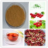 Hot Sale Natural hawthorn fruit extract