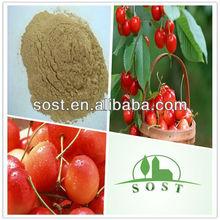high quality best price cherry extract
