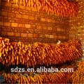 Maïs jaune origine indienne pour l'alimentation animale et non ogm