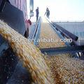 preço por tonelada de milho com qualidade de primeira classe