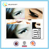 Fashion tatoo sticker/eyebrow sticker/tattoo sticker