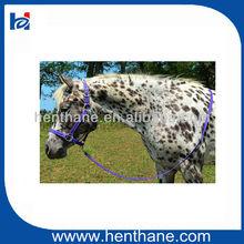 PVC training halters for horses