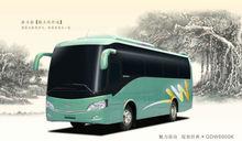 8m DAEWOO Luxury Passenger Bus(GDW6900K)
