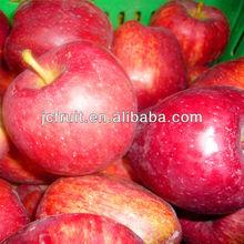 fresh red apple