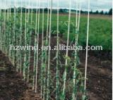 Pultrusion fiberglass plant stake