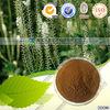 black cohosh root extract powder Cimicifugoside