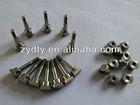 titanium Gr2 anode screws