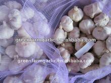Organic Fresh Garlic From China