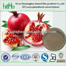 ISO GMP standard natural pomegranate skin extract