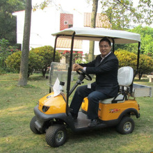 2013 newest hot sale 36V 1200W utility electric golf car with rear cargo box for shopping