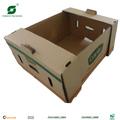 Vegetales de frutas& caja de cartón corrugado