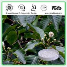 Naturale camptotecina derivati 98%