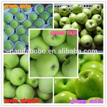 Fresh Green Apple organic green apples