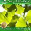 China Manufacturer - Ginkgo Biloba Extract Liquid Capsules Tablet