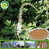Premium Grade Black Cohosh Extract Powder In Stock