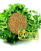 fenugreek extract/fenugreek extract powder /fenugreek extract supplier