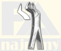 Right Upper Molars, Tooth Extracting Forceps
