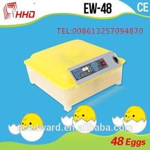 miglior prezzo termostato digitale per incubatore di buona qualità