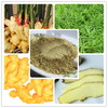 organic ginger root extract/nature ginger root extract/high quality ginger extract