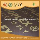 4x8x18mm tiger plywood for construction formwork wbp glue poplar combi core hardwood core