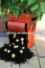 30L Garden Potato Planter Grow Bag With 2 Pack,PE Fabric Green Planter Bags,Pop-Up Planter Grow Bag