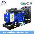 Diesel motor de turbina de/generador conjunto/generador diesel