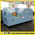 10-1000 kw generador de gas natural conjunto/de combustible: gnc, glp, el biogás, syngas/generador diesel/de gas del fabricante del motor