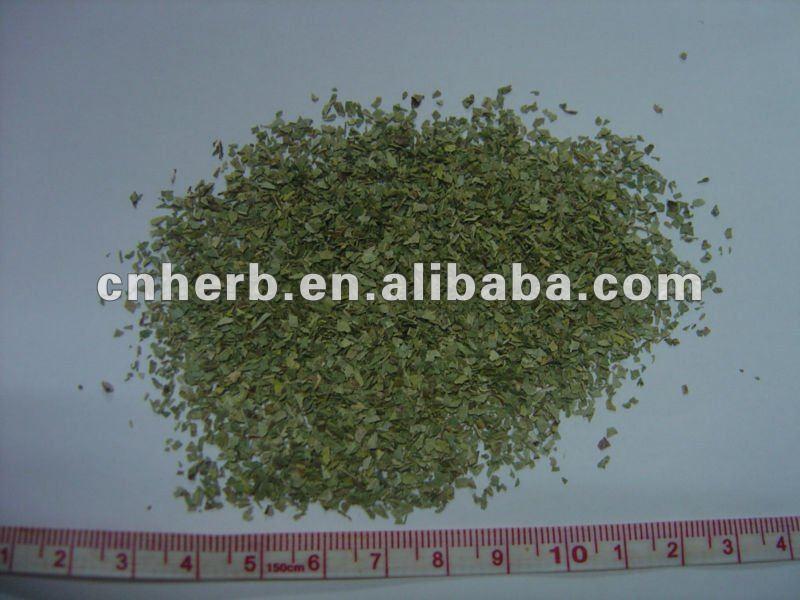 Goiaba chá de folhas de corte