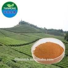 Manufacturer Pure Natural High Quality Green Tea Extract, Green Tea Extract Powder, Tea Polyphenol