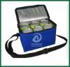 600D Cooler Bags With Adjustable shoulder strap