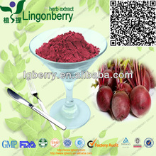 Natural and GMP supplier for red beet juice concentrate powder