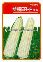 Chino híbrido blanco semillas de maíz / del maíz de maíz semillas