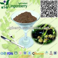 Miquel Linden Flower Extract/ Tilia Flowers extract/Linden extract