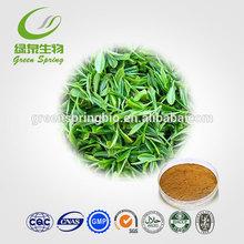Green Tea Extract / 80% Green Tea Catechins