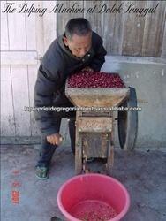 Premium Gourmet Hand Selected Sumatra Coffee Beans