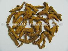 Turmeric Finger new crop 2013