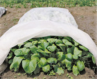 Excellent quality pp spunbonded nonwoven fabric for agriculture/crop covers/frost protection