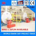 Wns 6t 1.25 mpa de petróleo y gas de segunda mano de vapor de la caldera