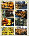 Rolo compactador empilhadeira compactador roda carregador frontal real unidade eixo para Xcmg Xgma Dynapac John Deere Shantui Yutong Yineng Lonking