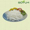 Amidon de livraison sans gluten low carb alimentaire végétarien konjac riz