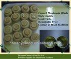 Manufacturer for Brined Mushroom, Canned Mushroom, Dried Mushroom, Frozen Mushroom