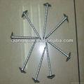 المهنية انتاج جميع أنواع مظلة حجم الرأس مسامير تسقيف (تصنيع وتصدير)