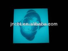 Photoluminescent Ceramic Glaze/Glow in the Dark Enamel Glaze
