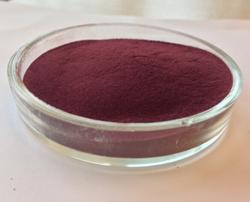 Biggest Supplier of Pure Cranberry Extract,Kosher Halal Certificate,100% U.S.A Imported Vaccinium Macrocarpon Origin