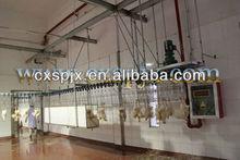 Tavuk mezbaha ekipmanları/tavuk kesim üretim hattı/su uyuşmuş afet